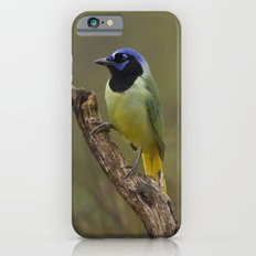 Green Jay Slim Case iPhone 6s