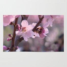 Pink spring time Rug