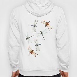 Dragonfly Pattern Hoody