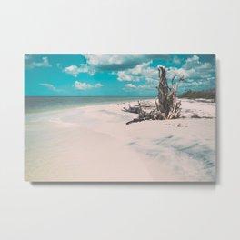 Ocean shore and fallen tree in Lovers Key, Florida Metal Print