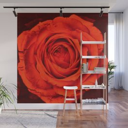 Vintage Rose,red Wall Mural
