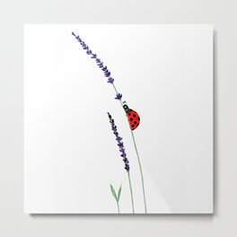 red ladybug and purple lavender Metal Print