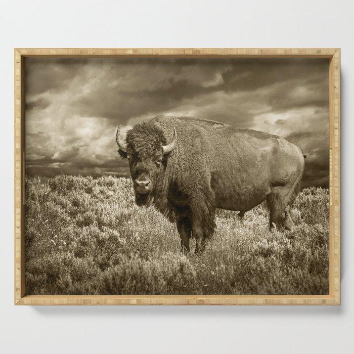 American Buffalo in Sepia Tone Serving Tray