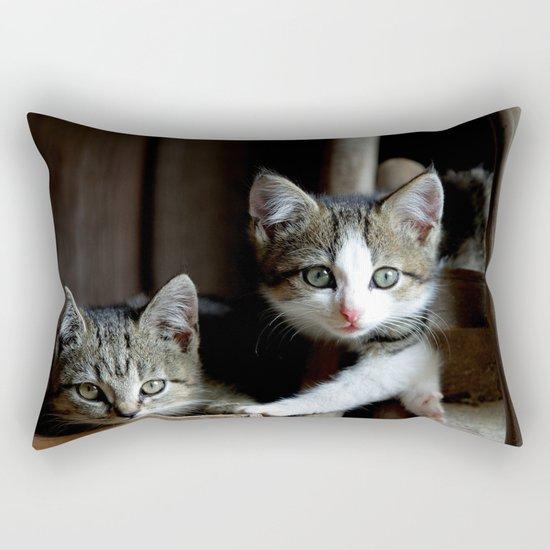 A small cats dream team in the siesta Rectangular Pillow