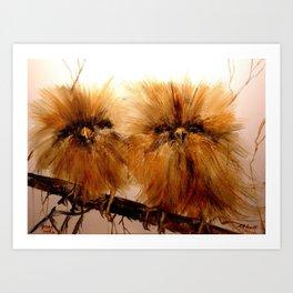 Young Owls Art Print