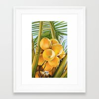 coconut wishes Framed Art Prints featuring Coconut by The Art of Vancuf