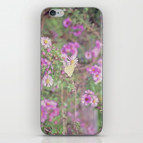 Earlybird iPhone & iPod Skin