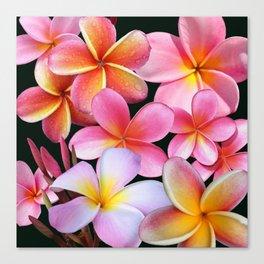 Pink Plumerias Canvas Print