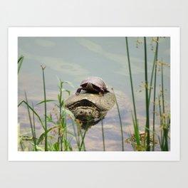 Turtleback Ride Art Print