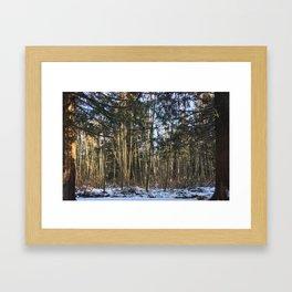 Winter at Home Framed Art Print