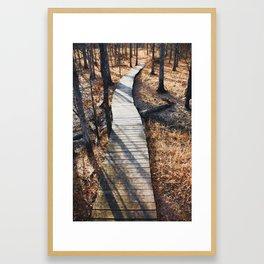 Winter walks, New Jersey Framed Art Print