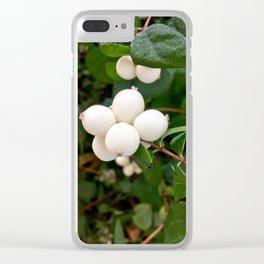 Symphoricarpos, Seattle [Cecilia Lee] Clear iPhone Case
