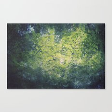 in the leaves Canvas Print