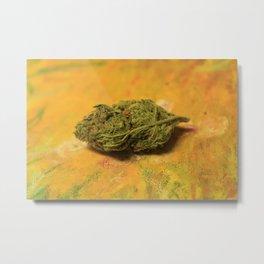 Cannabis XXX Metal Print