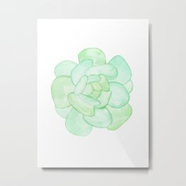 Crassula - Green Succulent Metal Print