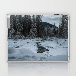 Winter's Grip Laptop & iPad Skin
