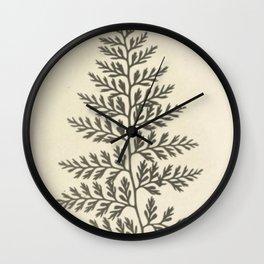 Naturalist Fern Wall Clock