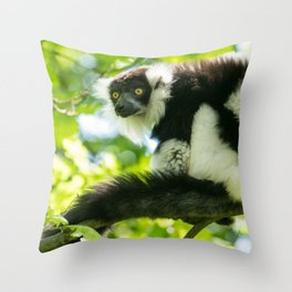Black-and-white Ruffed Lemur Throw Pillow