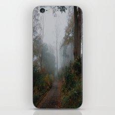 Foggyventures iPhone & iPod Skin