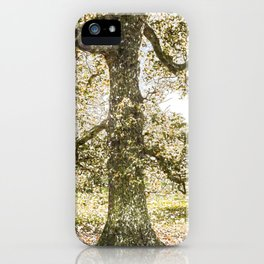 Snow tree Greenwich Park London iPhone Case