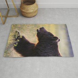 Brown bear in backlight Rug
