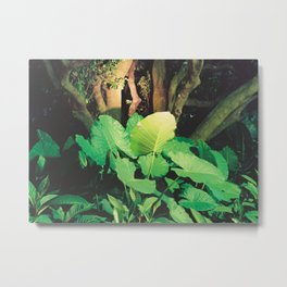 In the Park I Metal Print