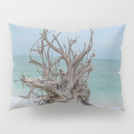 Remember Your Roots Pillow Sham