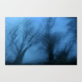 Visions in the twilight Canvas Print