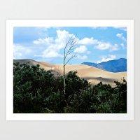 Sole tree on the Dunes Art Print