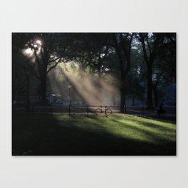central park mist Canvas Print