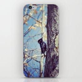 Baby Woodpecker  iPhone Skin