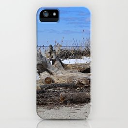 Winter in Maumee Bay iPhone Case