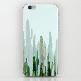 horizont cactus iPhone Skin