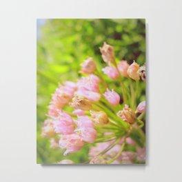 Pink Tenderness Metal Print