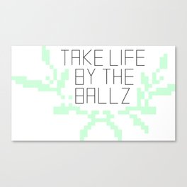 Take Life by the Ballz Canvas Print