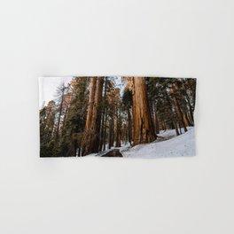 Walking Sequoia 5 Hand & Bath Towel