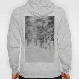 the Tuileries Garden, Paris Hoody