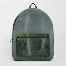Photograph of mist on water, with woodland on the shore. Backpack