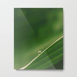 drop on green Metal Print