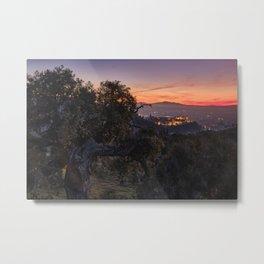 Magical trees and Alhambra Palace. Granada at sunset.  Metal Print
