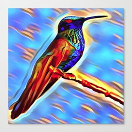 The HummingBird Canvas Print