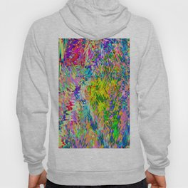 Abstract 307 QY Hoody