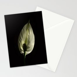 Spathiphyllum, Peace lily Stationery Cards