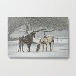 2 Horses under a tree in winter Metal Print