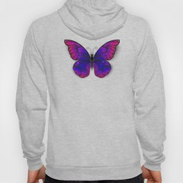 Tricolored Butterfly Hoody
