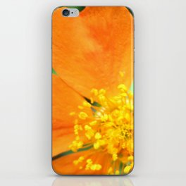 Orange Flower Photography iPhone Skin