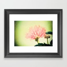 Fairy Floss Framed Art Print