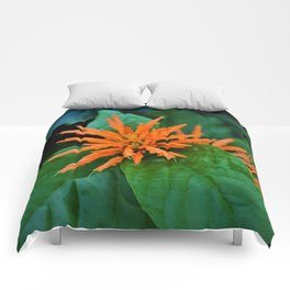 Orange Trumpet Flower Comforters