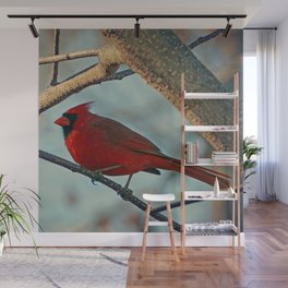 Pretty Male Cardinal Wall Mural