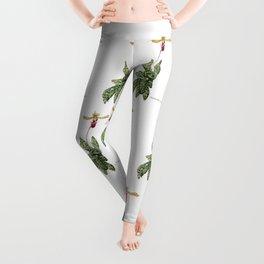 Paphiopedilum memoria var. Cha Cha Spritz - Lady-slipper orchid Leggings